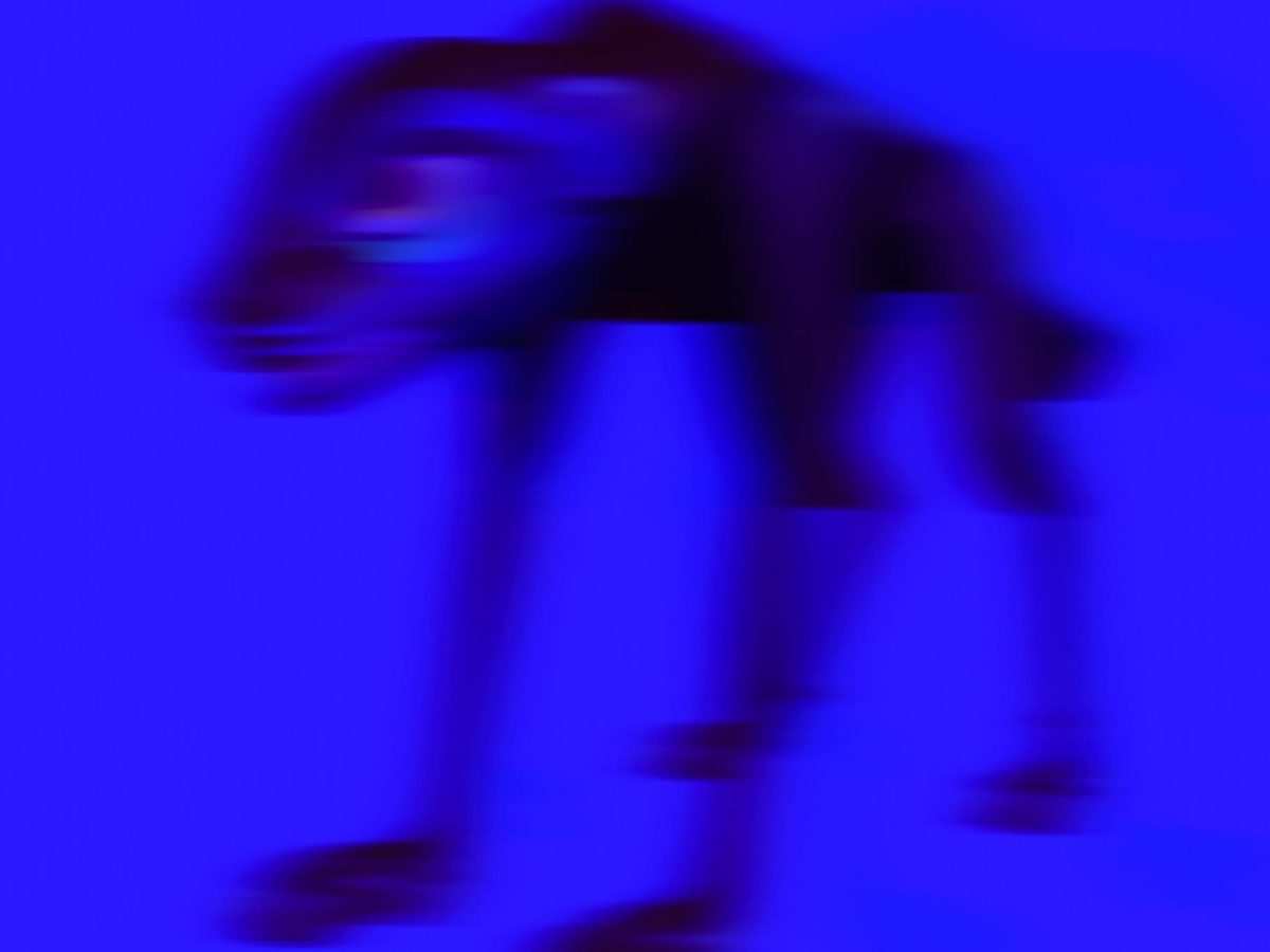 SBTRKT arcasheepedit12 Arca Sheep Edit
