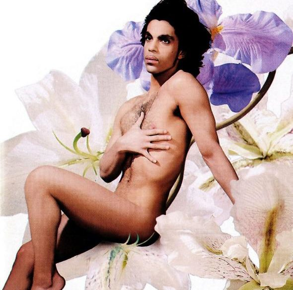 Prince gay conservative sexual emancipation