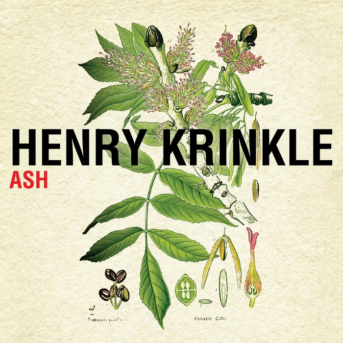 Henry Krinkle Ash Willow