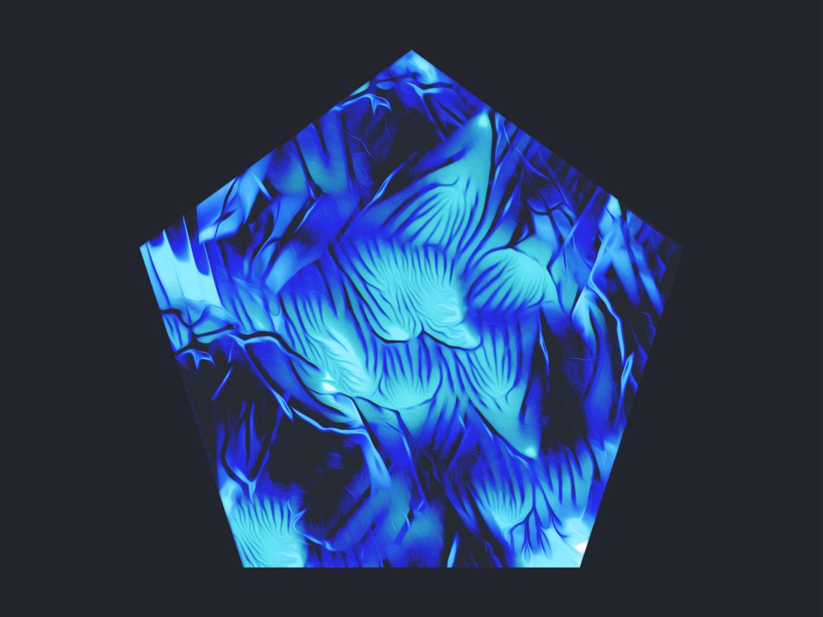 shells-jailbird-artwork