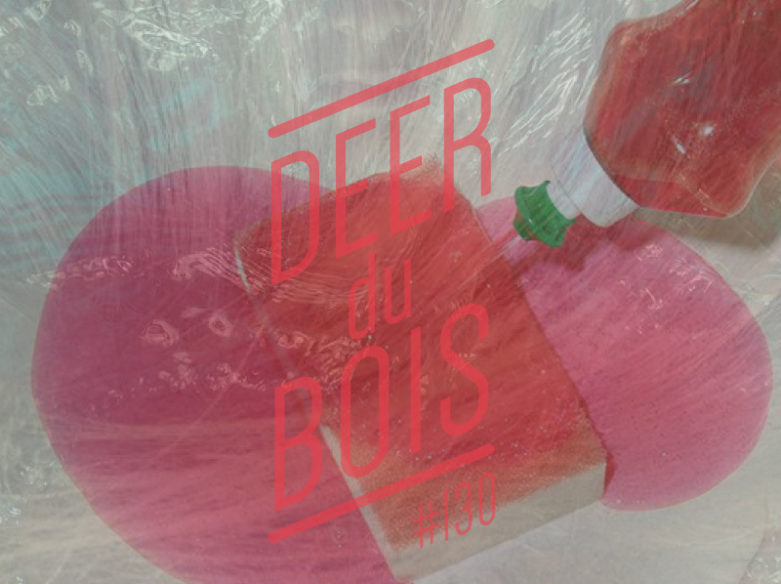 The Deer Du Bois indie pop playlist 130