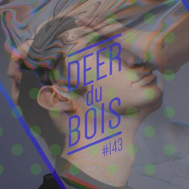 The Deer Du Bois playlist 143 indie pop electronica