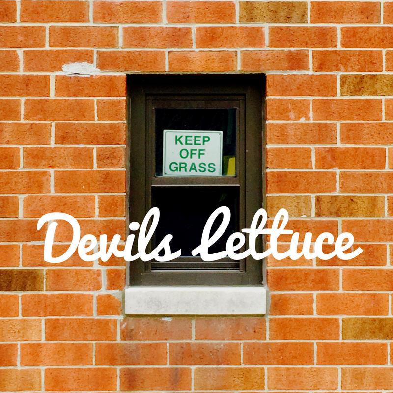Devil's Lettuce jince playlist