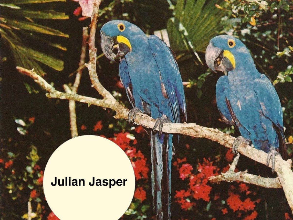 Julian Jasper