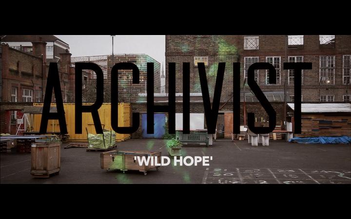 Archivist Wild Hope