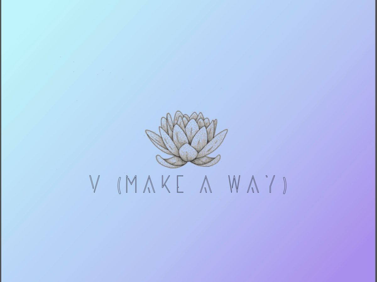 visionnaire v make a way