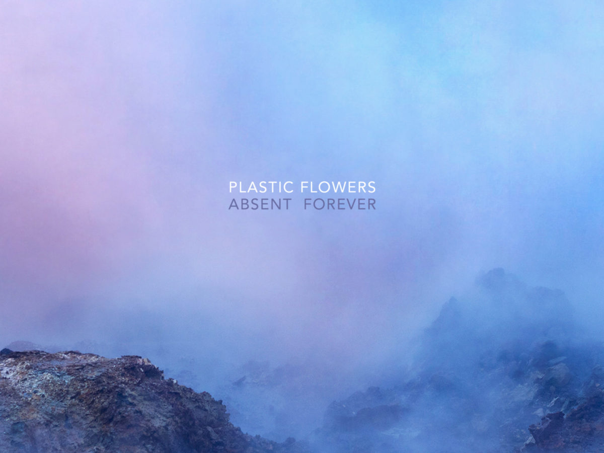 Plastic Flowers Absent Forever