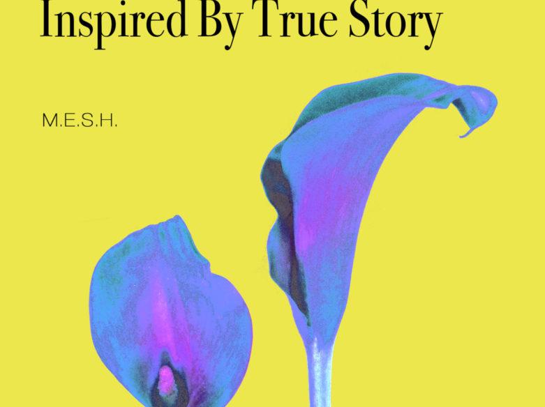 M.E.S.H. Inspired True Story