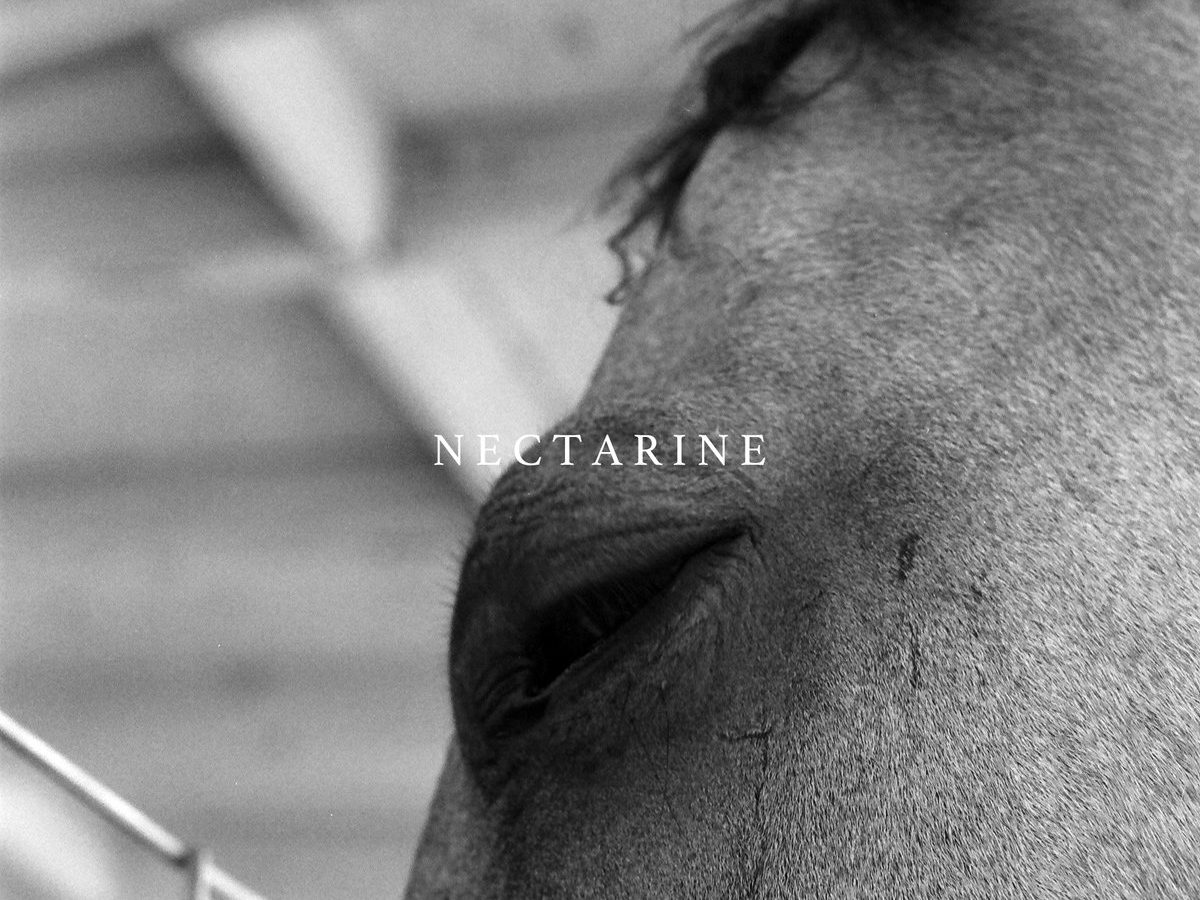 Funeral Advantage Nectarine