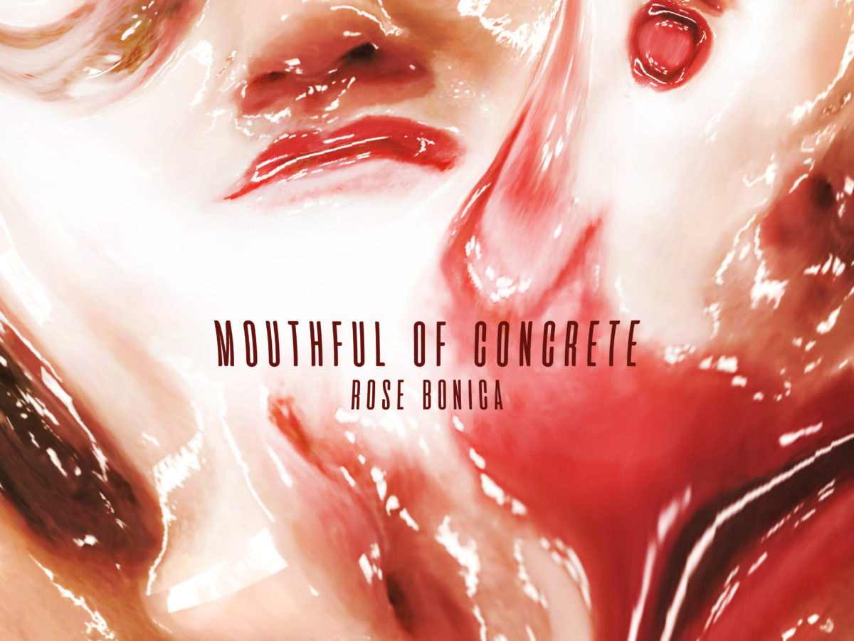 Rose Bonica Mouthful of Concrete